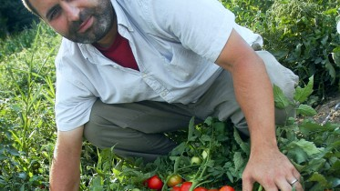 Perhaps a bloody Mary: Professor Zachary Lippman brings massive tomato knowledge -- and knowledge of massive tomatoes -- to CSHL's Cocktails & Chromosomes, Aug. 4, Finley's of Huntington.