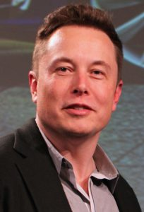 Elon Musk: Site inspection?